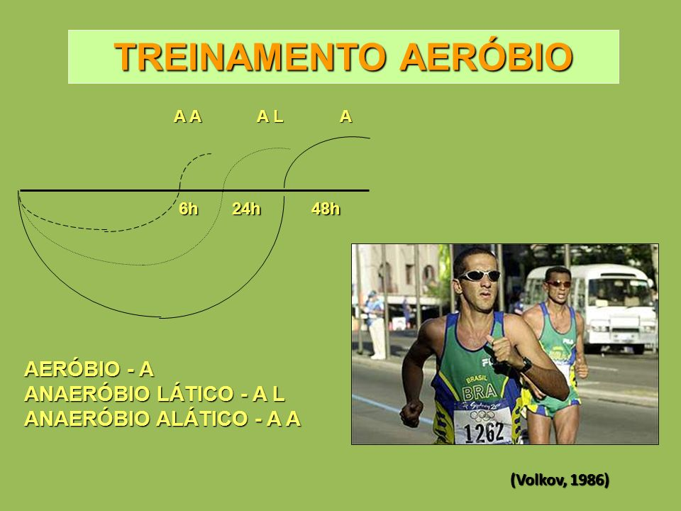A A L A A 6h24h48h TREINAMENTO AERÓBIO AERÓBIO - A ANAERÓBIO LÁTICO - A L ANAERÓBIO ALÁTICO - A A (Volkov, 1986)
