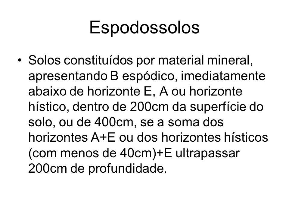 Espodossolos Solos constituídos por material mineral, apresentando B espódico, imediatamente abaixo de horizonte E, A ou horizonte hístico, dentro de