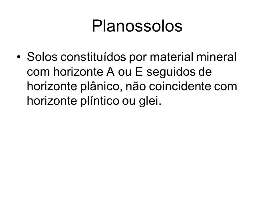 Planossolos Solos constituídos por material mineral com horizonte A ou E seguidos de horizonte plânico, não coincidente com horizonte plíntico ou glei