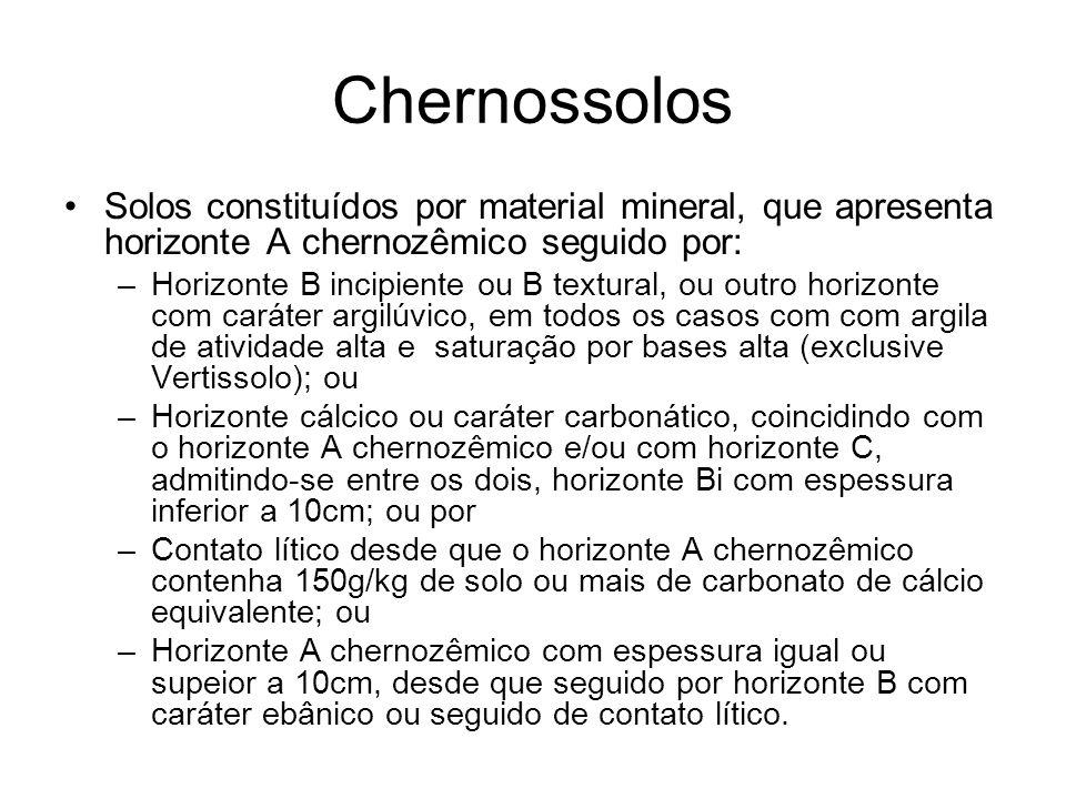 Chernossolos Solos constituídos por material mineral, que apresenta horizonte A chernozêmico seguido por: –Horizonte B incipiente ou B textural, ou ou