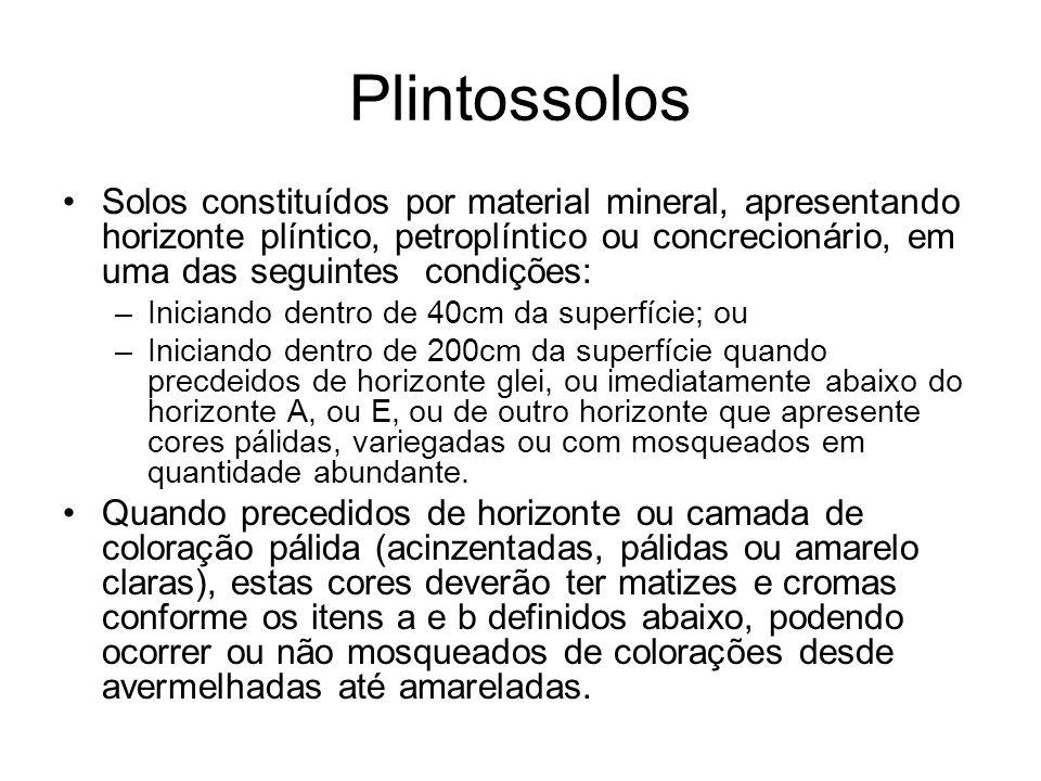 Plintossolos Solos constituídos por material mineral, apresentando horizonte plíntico, petroplíntico ou concrecionário, em uma das seguintes condições