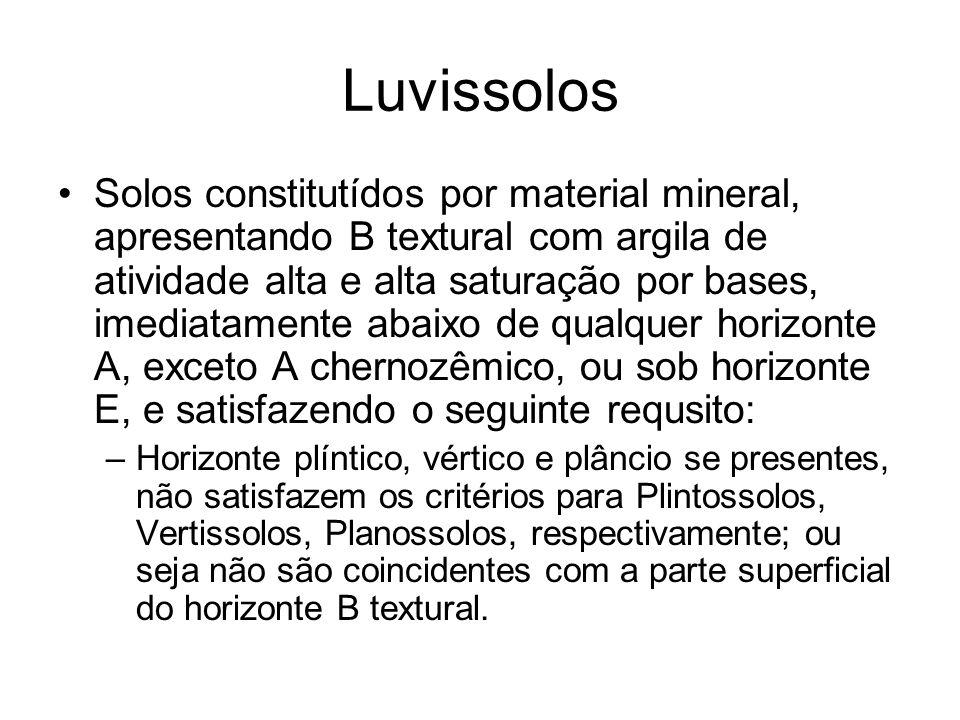 Luvissolos Solos constitutídos por material mineral, apresentando B textural com argila de atividade alta e alta saturação por bases, imediatamente ab