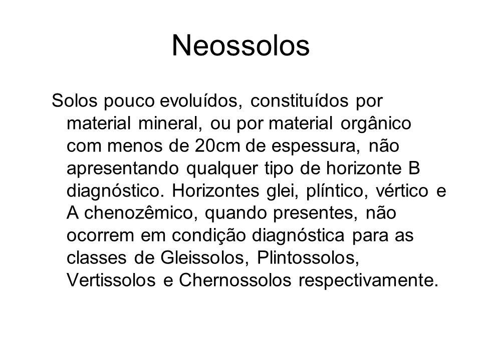 Neossolos Solos pouco evoluídos, constituídos por material mineral, ou por material orgânico com menos de 20cm de espessura, não apresentando qualquer