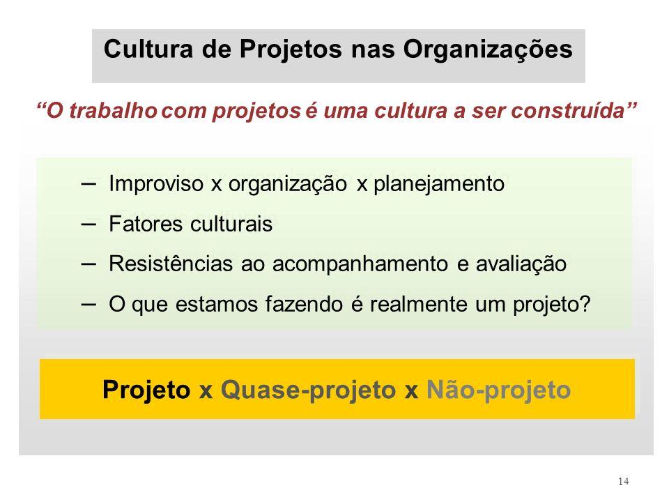 14 Cultura de Projetos nas Organizações – Improviso x organização x planejamento – Fatores culturais – Resistências ao acompanhamento e avaliação – O