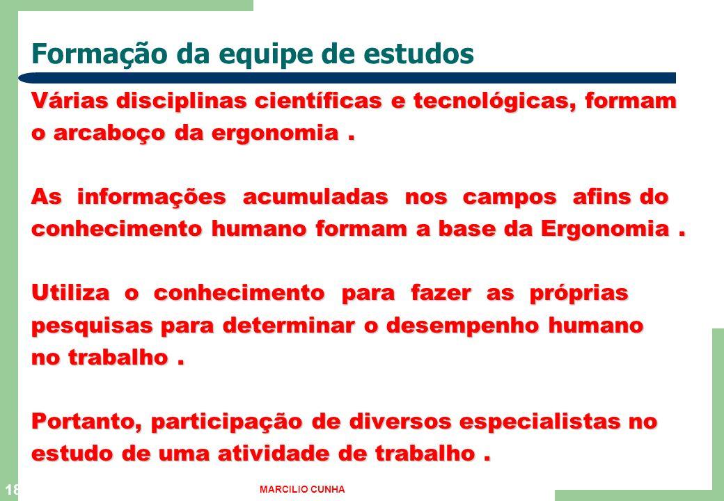 18 Formação da equipe de estudos Várias disciplinas científicas e tecnológicas, formam o arcaboço da ergonomia.