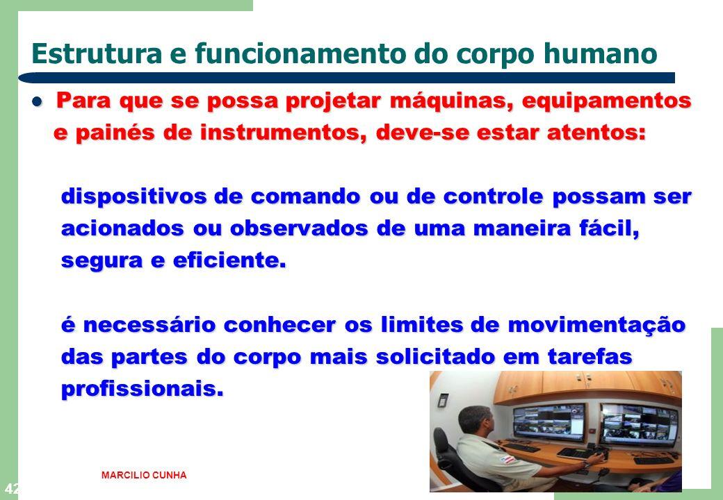 42 Estrutura e funcionamento do corpo humano Para que se possa projetar máquinas, equipamentos Para que se possa projetar máquinas, equipamentos e pai