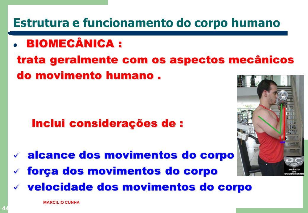44 Estrutura e funcionamento do corpo humano BIOMECÂNICA : trata geralmente com os aspectos mecânicos trata geralmente com os aspectos mecânicos do movimento humano.