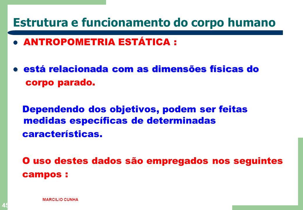 45 Estrutura e funcionamento do corpo humano ANTROPOMETRIA ESTÁTICA : está relacionada com as dimensões físicas do está relacionada com as dimensões físicas do corpo parado.