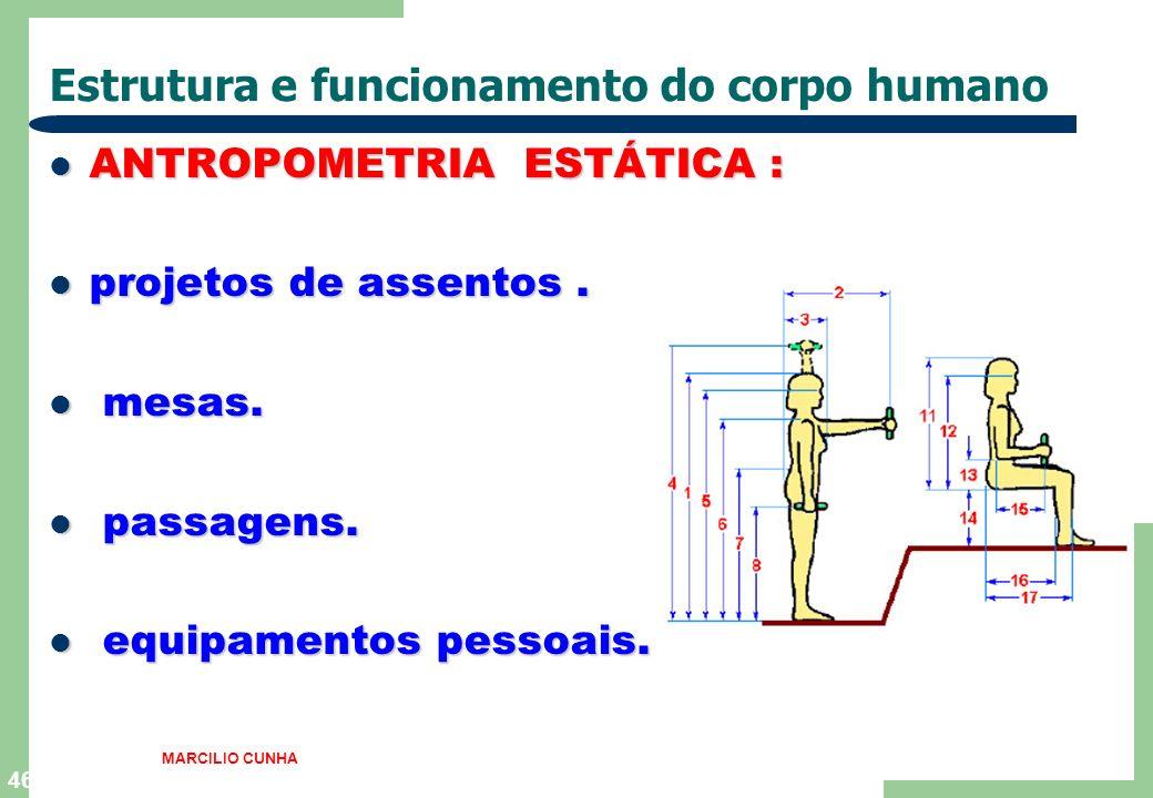 46 Estrutura e funcionamento do corpo humano ANTROPOMETRIA ESTÁTICA : ANTROPOMETRIA ESTÁTICA : projetos de assentos. projetos de assentos. mesas. mesa