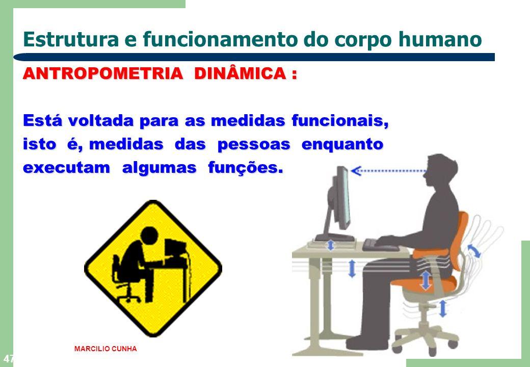 47 Estrutura e funcionamento do corpo humano ANTROPOMETRIA DINÂMICA : Está voltada para as medidas funcionais, isto é, medidas das pessoas enquanto executam algumas funções.
