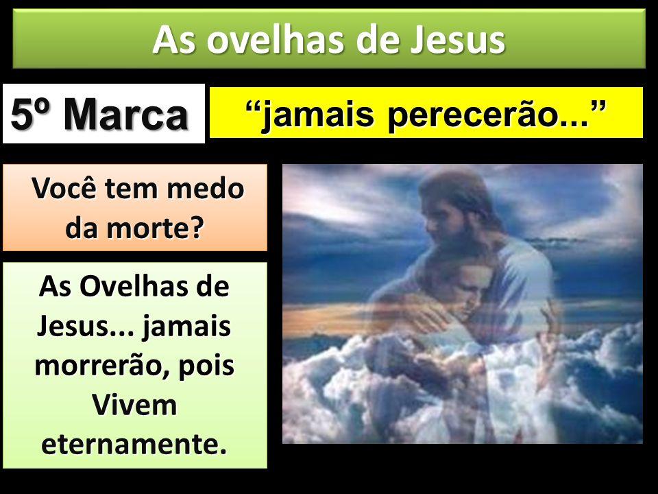 jamais perecerão... 5º Marca As ovelhas de Jesus Você tem medo da morte? Você tem medo da morte? As Ovelhas de Jesus... jamais morrerão, pois Vivem et