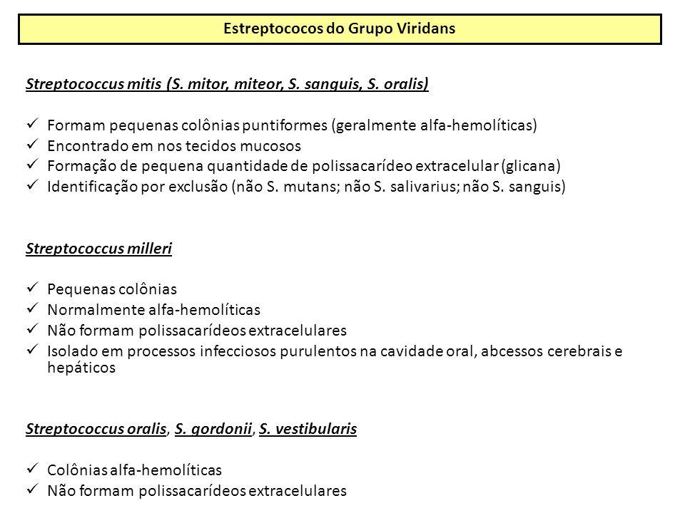 Streptococcus mitis (S.mitor, miteor, S. sanguis, S.