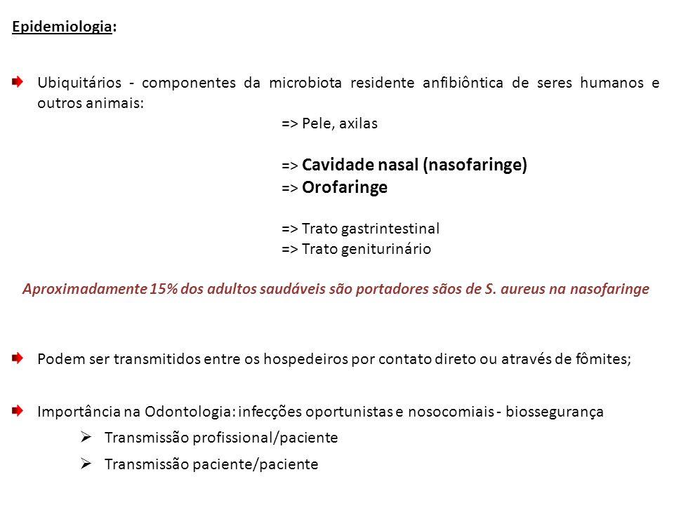 Epidemiologia: Ubiquitários - componentes da microbiota residente anfibiôntica de seres humanos e outros animais: => Pele, axilas => Cavidade nasal (nasofaringe) => Orofaringe => Trato gastrintestinal => Trato geniturinário Aproximadamente 15% dos adultos saudáveis são portadores sãos de S.