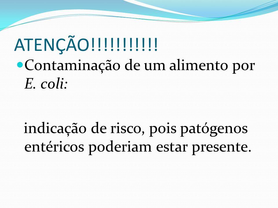 ATENÇÃO!!!!!!!!!!! Contaminação de um alimento por E. coli: indicação de risco, pois patógenos entéricos poderiam estar presente.