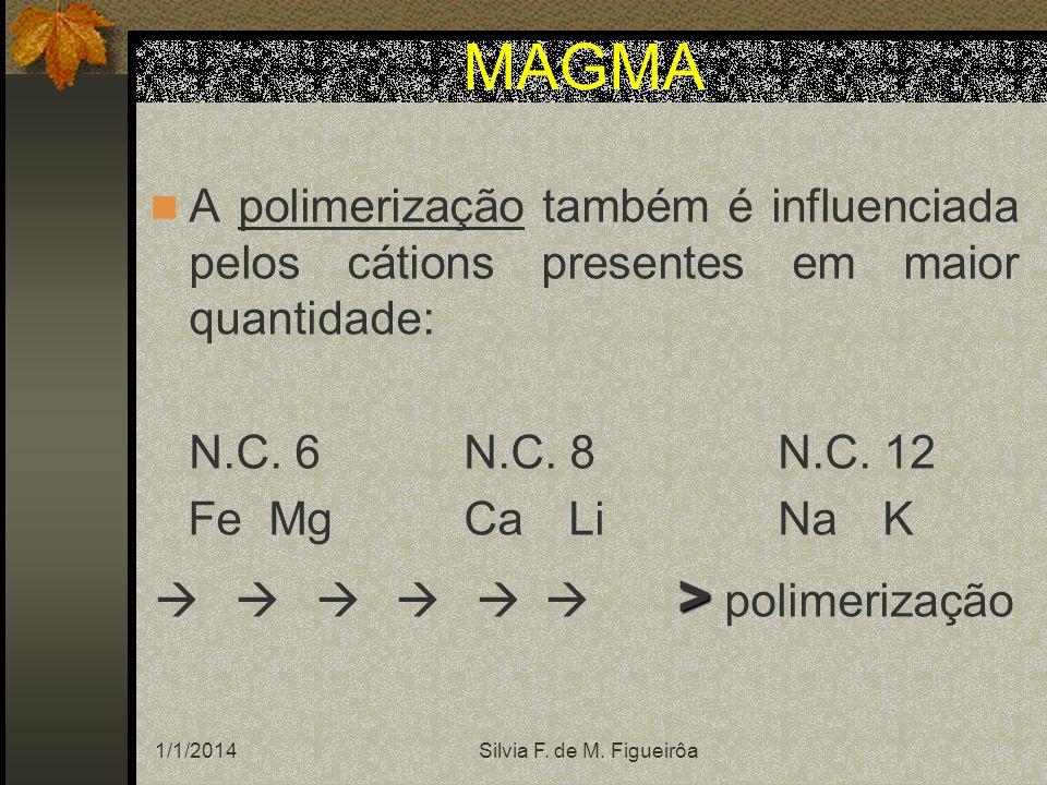 1/1/2014Silvia F. de M. Figueirôa A polimerização também é influenciada pelos cátions presentes em maior quantidade: N.C. 6N.C. 8N.C. 12 Fe MgCaLiNaK