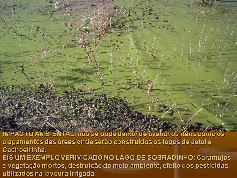 IMPACTO AMBIENTAL: não se pode deixar de avaliar os itens como os alagamentos das áreas onde serão construídos os lagos de Jataí e Cachoeirinha. EIS U