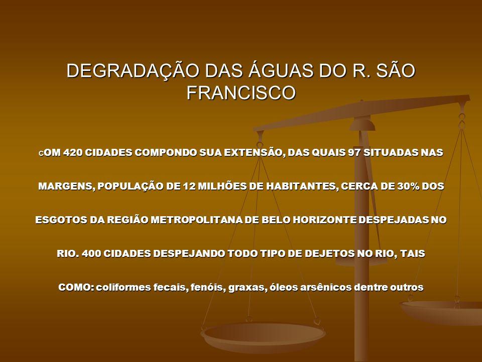 POPULAÇÃO PESQUISADA POR FAIXA ETARIA