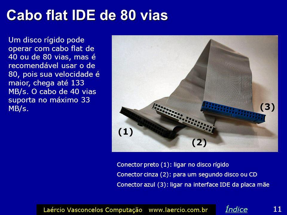 Disco rígido O disco rígido também tem uma conexão para a fonte de alimentação e uma para o cabo flat IDE. 10 Índice