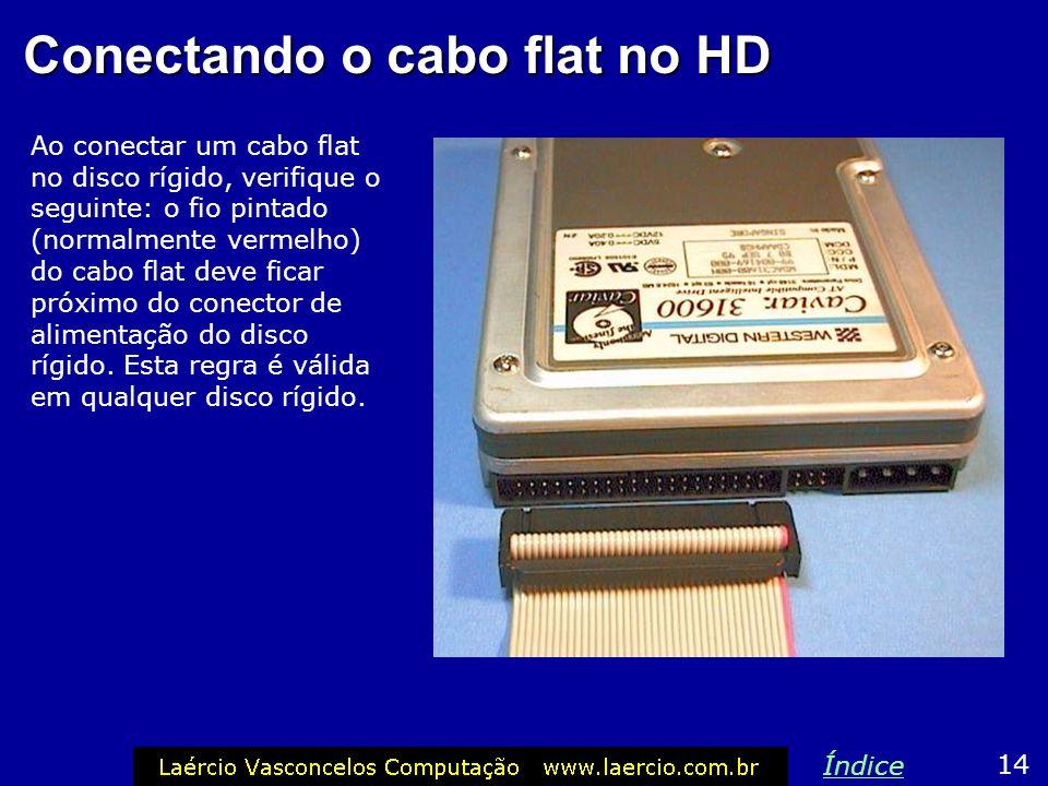 Conectando a fonte no HD A fonte de alimentação tem vários conectores como o mostrado ao lado, que servem para ligar no disco rígido. 13 Índice