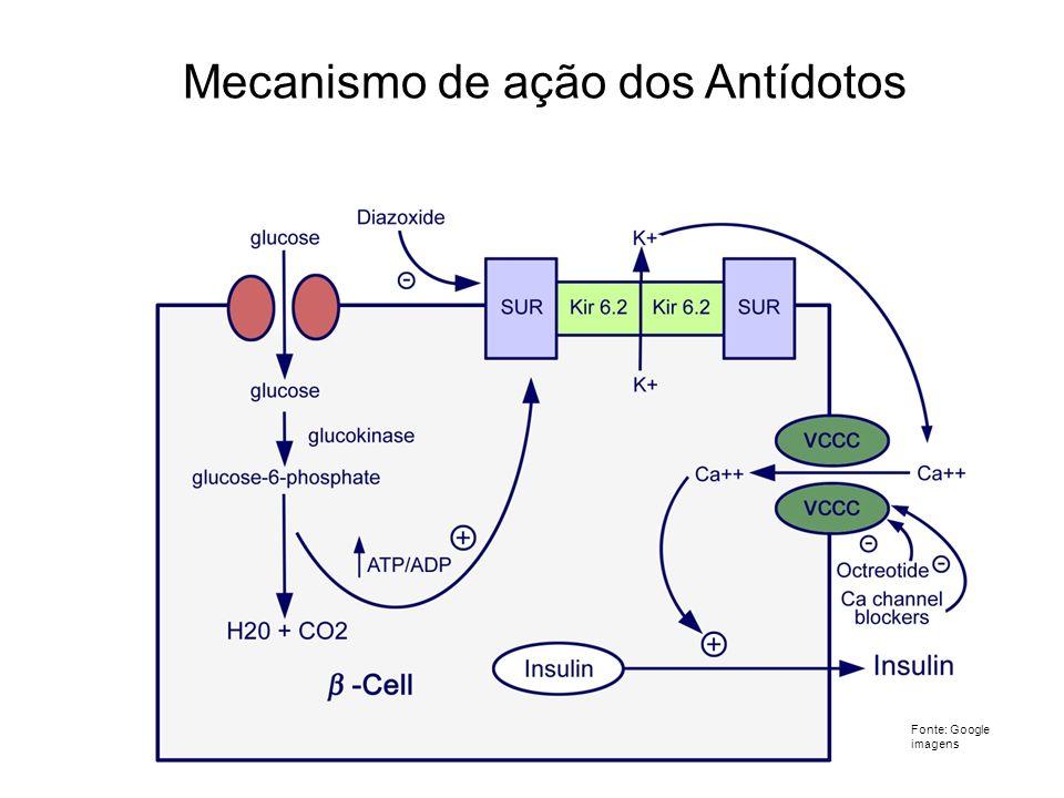 Mecanismo de ação dos Antídotos Fonte: Google imagens