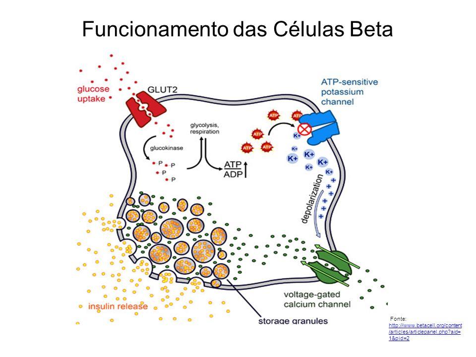Funcionamento das Células Beta Fonte: http://www.betacell.org/content /articles/articlepanel.php?aid= 1&pid=2 http://www.betacell.org/content /article