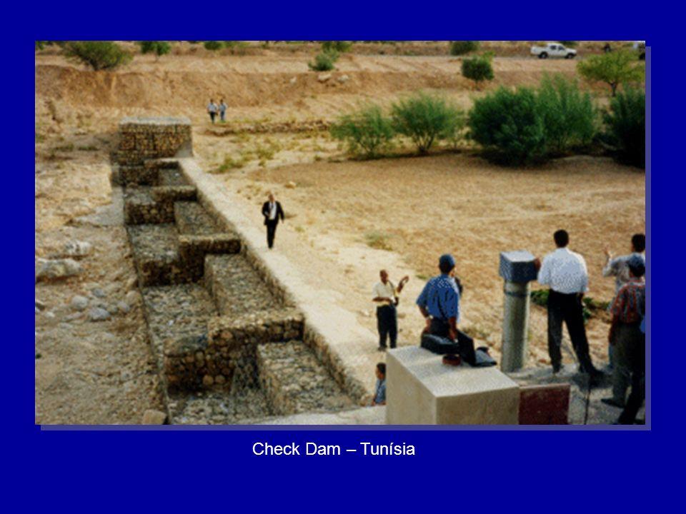 Check Dam – Tunísia