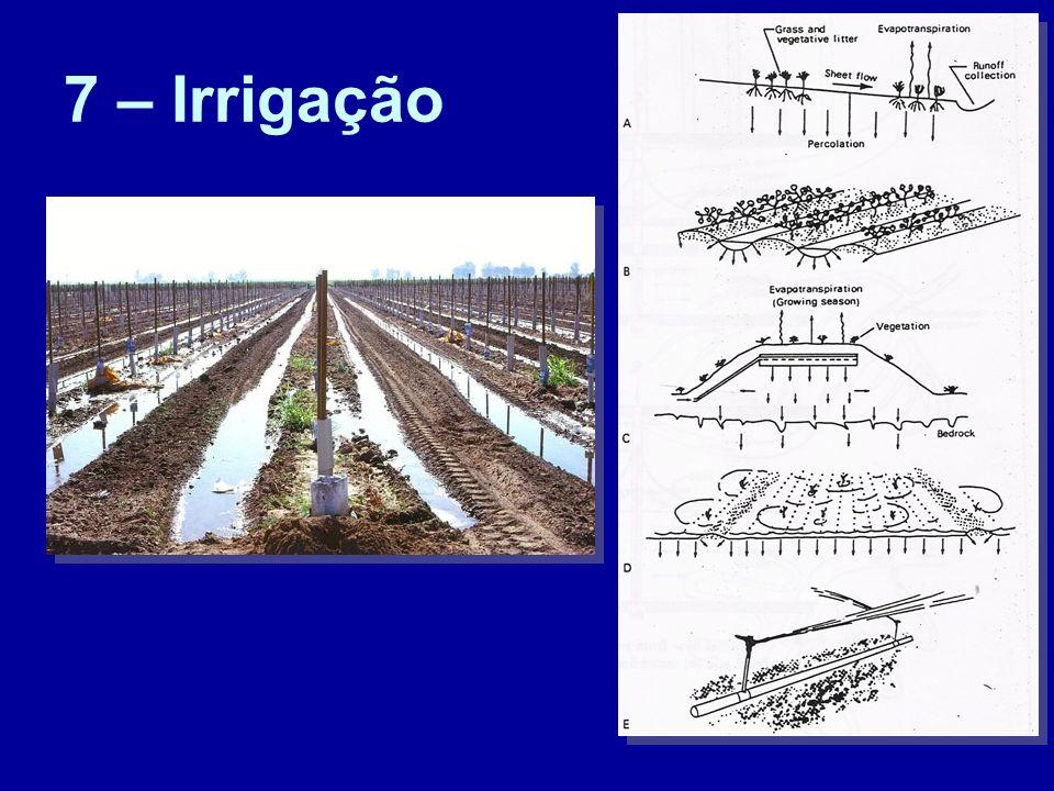 7 – Irrigação