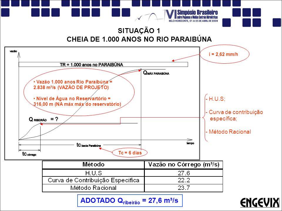 SITUAÇÃO 1 CHEIA DE 1.000 ANOS NO RIO PARAIBÚNA Vazão 1.000 anos Rio Paraibúna = 2.838 m³/s (VAZÃO DE PROJETO) Nível de Água no Reservartório = 316,00