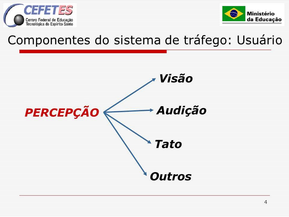 4 Componentes do sistema de tráfego: Usuário PERCEPÇÃO Visão Audição Tato Outros