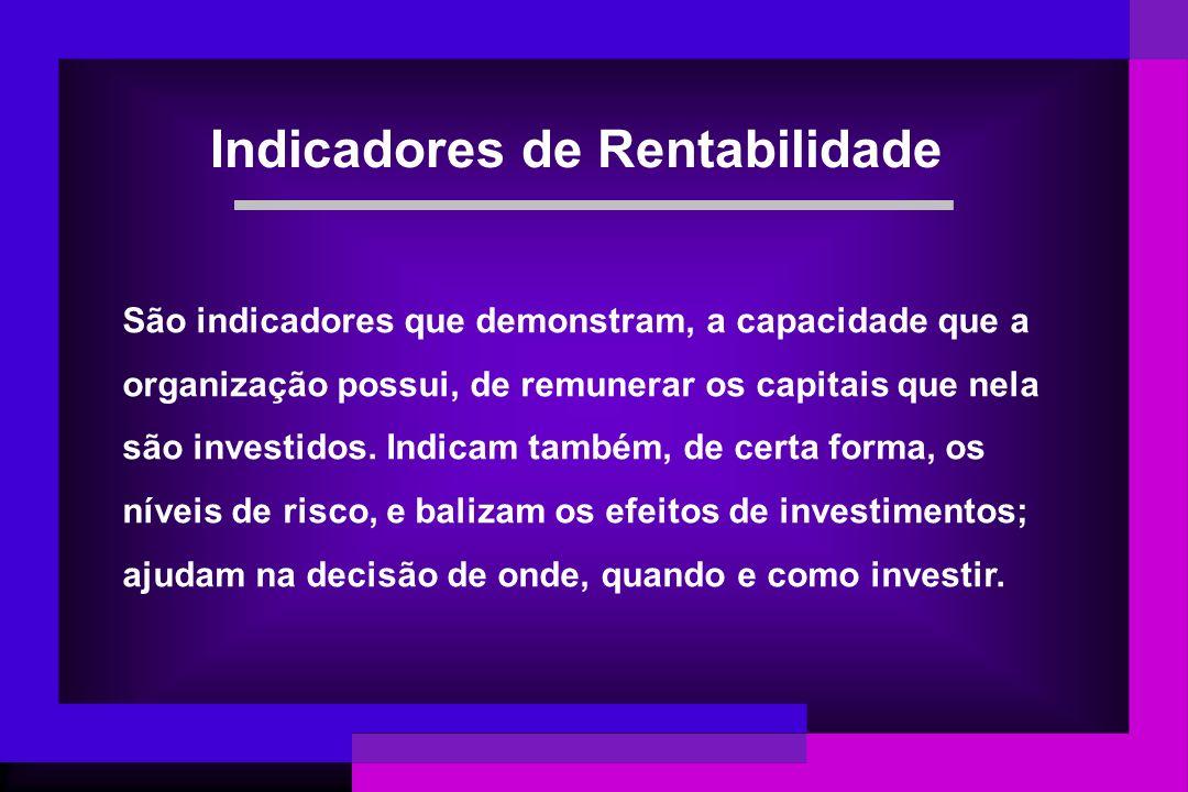 São indicadores que demonstram, a capacidade que a organização possui, de remunerar os capitais que nela são investidos. Indicam também, de certa form