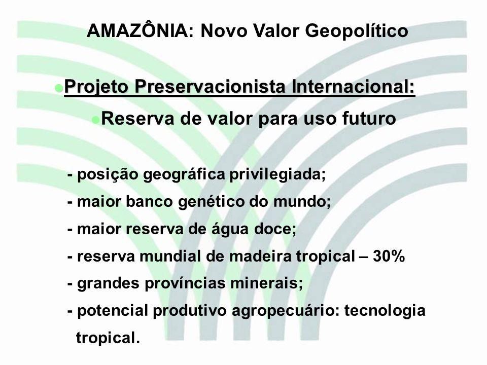 Projeto Preservacionista Internacional: Projeto Preservacionista Internacional: Reserva de valor para uso futuro - posição geográfica privilegiada; -