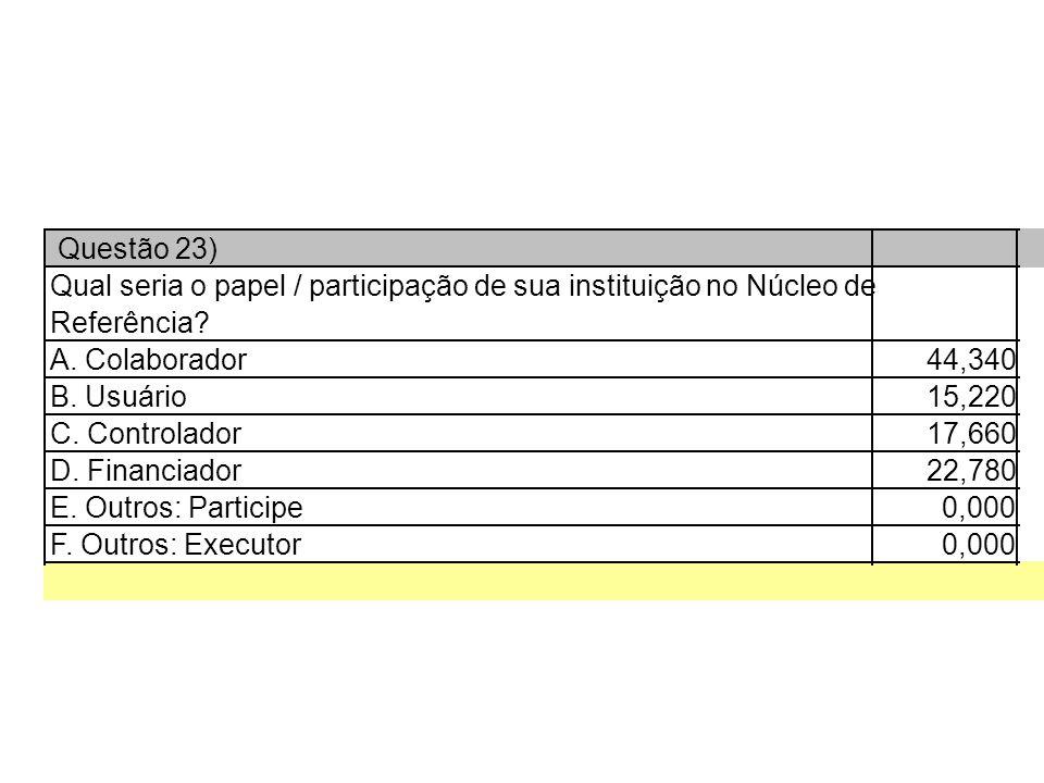 Questão 23) Qual seria o papel / participação de sua instituição no Núcleo de Referência.