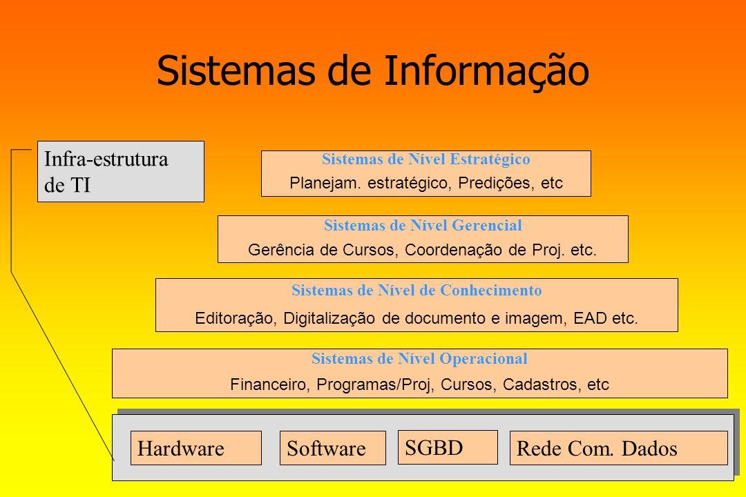 Sistemas de Informação HardwareSoftware SGBD Rede Com. Dados Sistemas de Nível Operacional Financeiro, Programas/Proj, Cursos, Cadastros, etc Sistemas