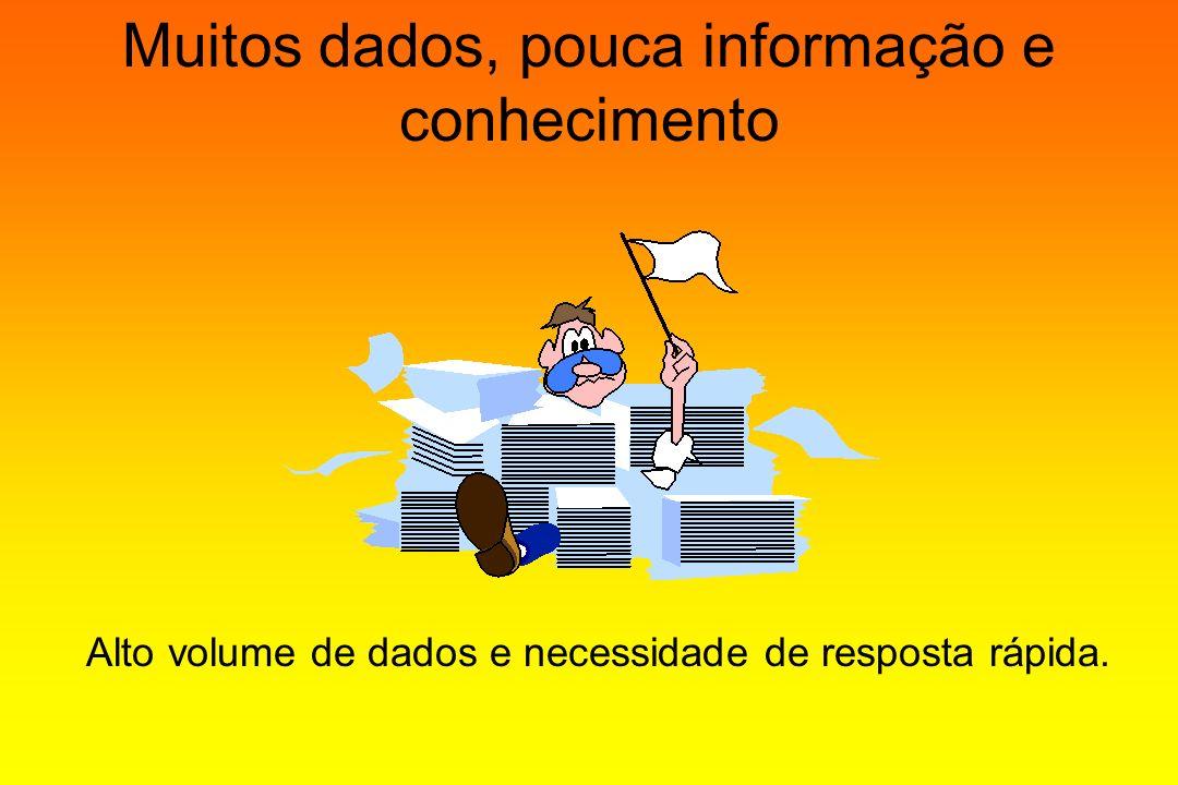 Muitos dados, pouca informação e conhecimento Alto volume de dados e necessidade de resposta rápida.