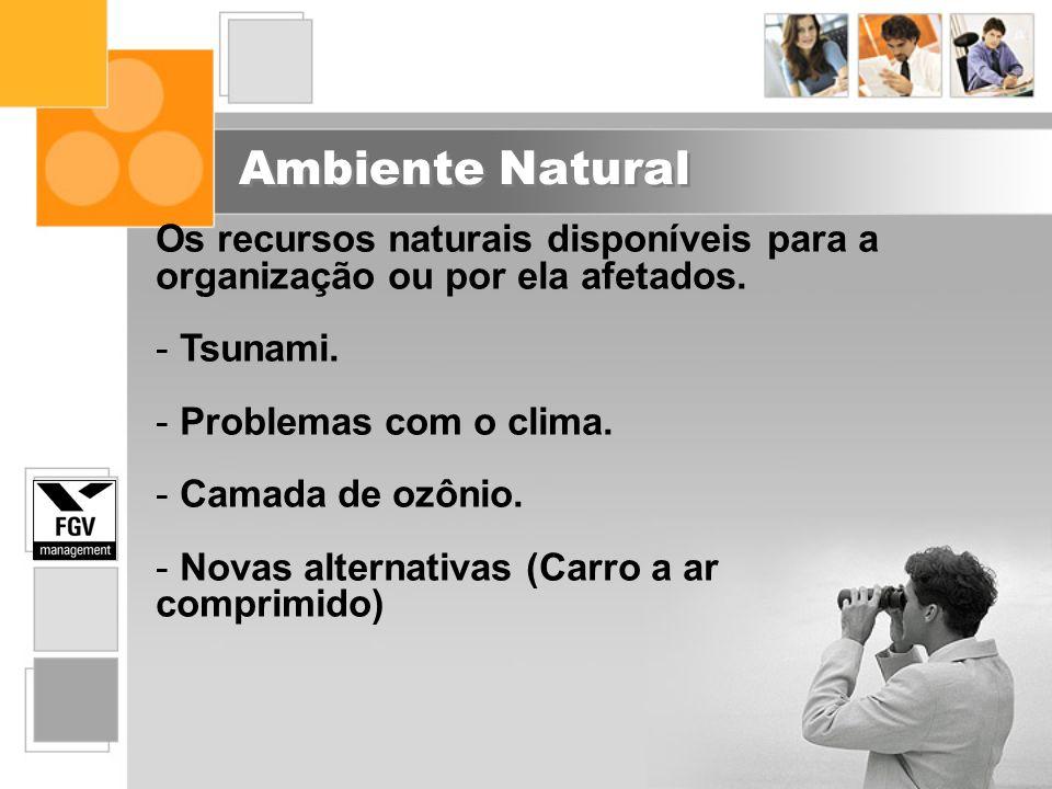 Ambiente Natural Os recursos naturais disponíveis para a organização ou por ela afetados. - Tsunami. - Problemas com o clima. - Camada de ozônio. - No