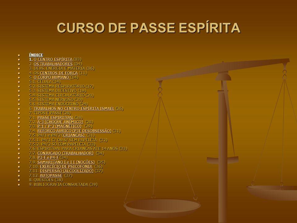 CURSO DE PASSE ESPÍRITA ÍNDICE ÍNDICE 1. O CENTRO ESPÍRITA (03) 1.