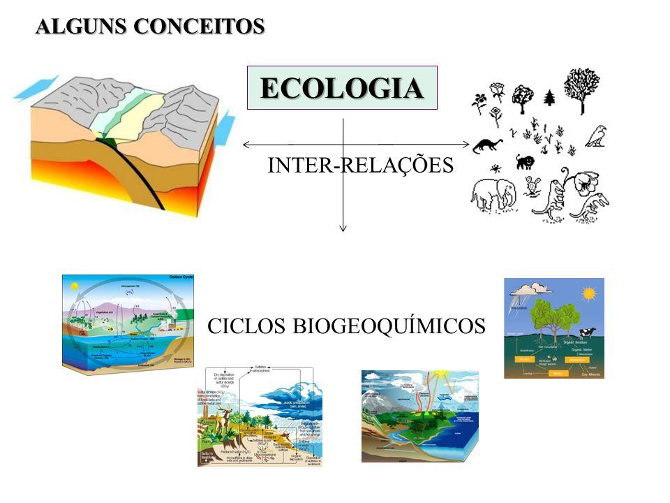 INTER-RELAÇÕES CICLOS BIOGEOQUÍMICOS ALGUNS CONCEITOS ECOLOGIA