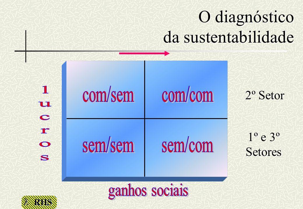 RHS O diagnóstico da sustentabilidade 2º Setor 1º e 3º Setores