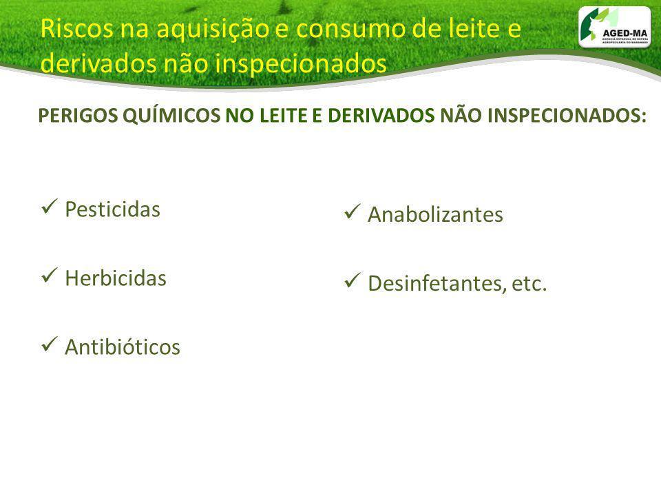 Pesticidas Herbicidas Antibióticos Anabolizantes Desinfetantes, etc. Riscos na aquisição e consumo de leite e derivados não inspecionados PERIGOS QUÍM