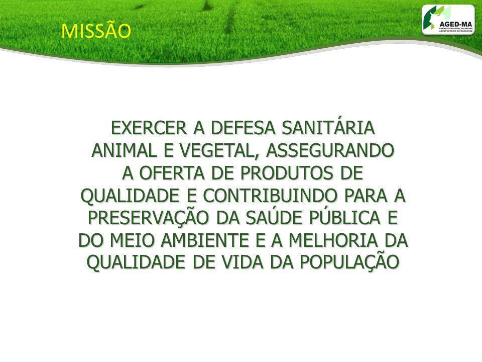 DHAA: Alimentação saudável Fácil de ser conseguida De qualidade Em quantidade suficiente De modo permanente.