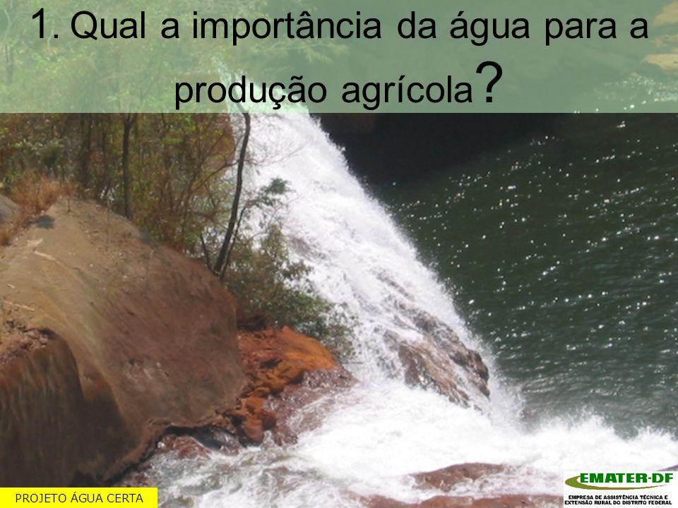 1. Qual a importância da água para a produção agrícola ? PROJETO ÁGUA CERTA