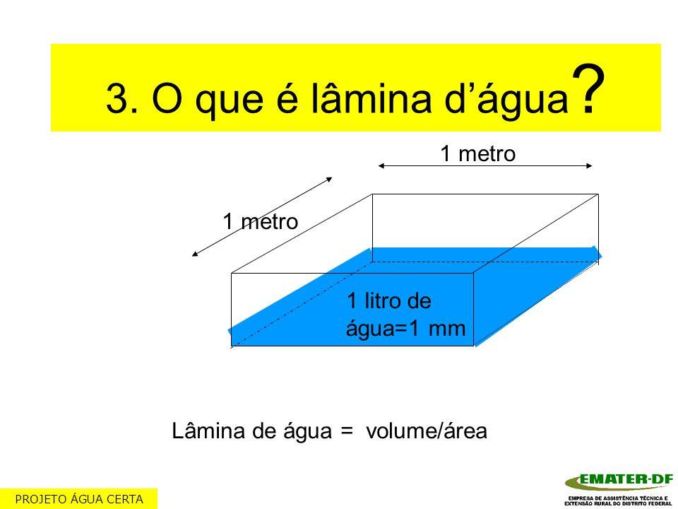 3. O que é lâmina dágua ? 1 litro de água=1 mm Lâmina de água = volume/área 1 metro PROJETO ÁGUA CERTA