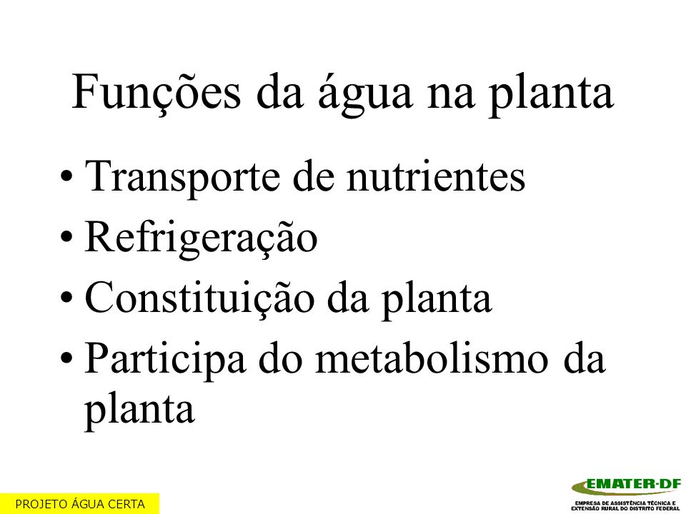 Funções da água na planta Transporte de nutrientes Refrigeração Constituição da planta Participa do metabolismo da planta PROJETO ÁGUA CERTA