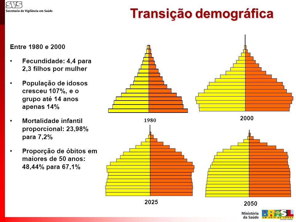 Entre 1980 e 2000 Fecundidade: 4,4 para 2,3 filhos por mulher População de idosos cresceu 107%, e o grupo até 14 anos apenas 14% Mortalidade infantil
