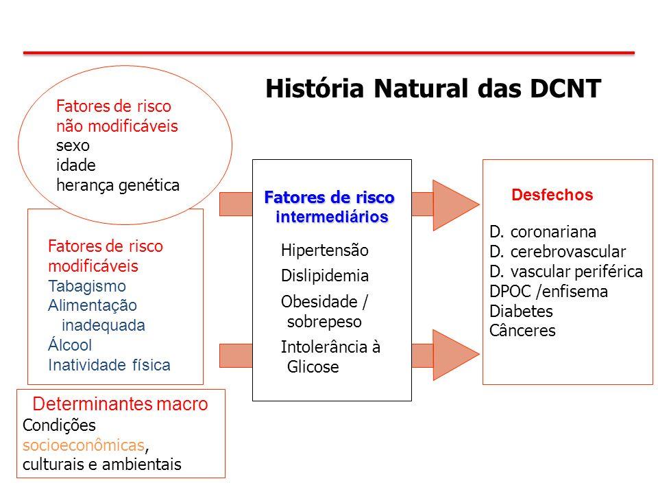 D. coronariana D. cerebrovascular D. vascular periférica DPOC /enfisema Diabetes Cânceres História Natural das DCNT Fatores de risco intermediários Hi