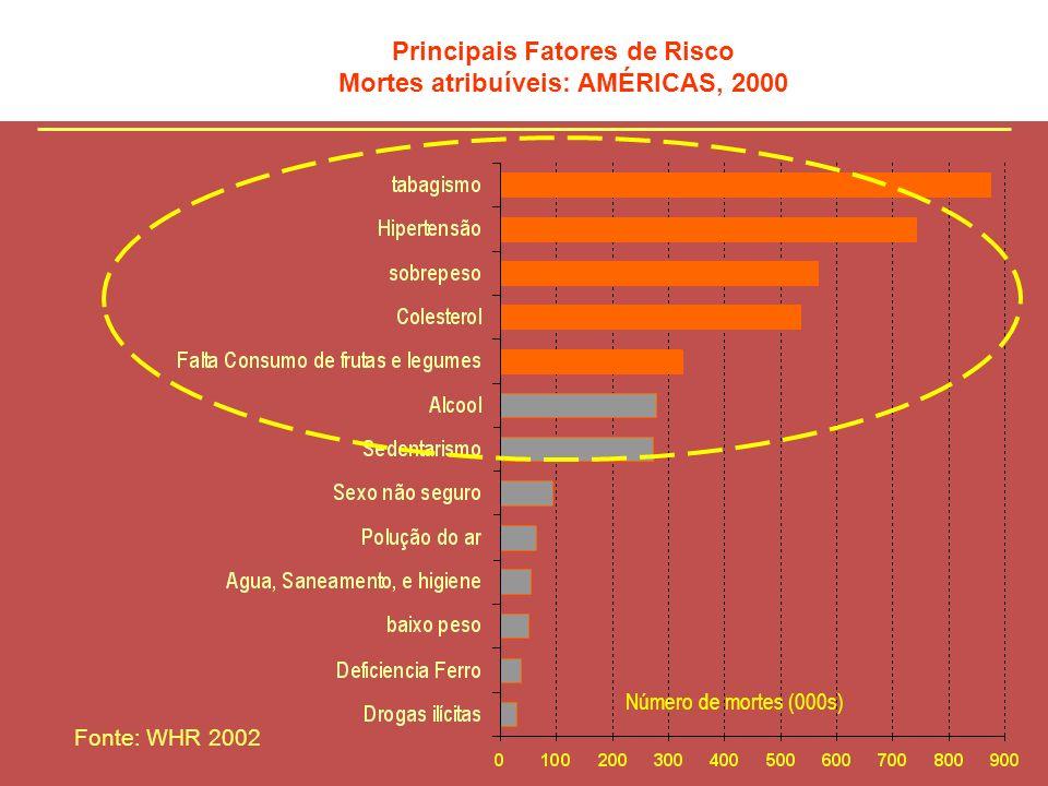Principais Fatores de Risco Mortes atribuíveis: AMÉRICAS, 2000 Número de mortes (000s) Fonte: WHR 2002