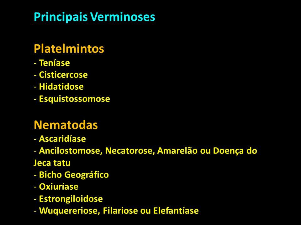 Principais Verminoses Platelmintos - Teníase - Cisticercose - Hidatidose - Esquistossomose Nematodas - Ascaridíase - Ancilostomose, Necatorose, Amarel