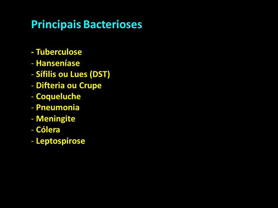 Principais Bacterioses - Tuberculose - Hanseníase - Sífilis ou Lues (DST) - Difteria ou Crupe - Coqueluche - Pneumonia - Meningite - Cólera - Leptospi