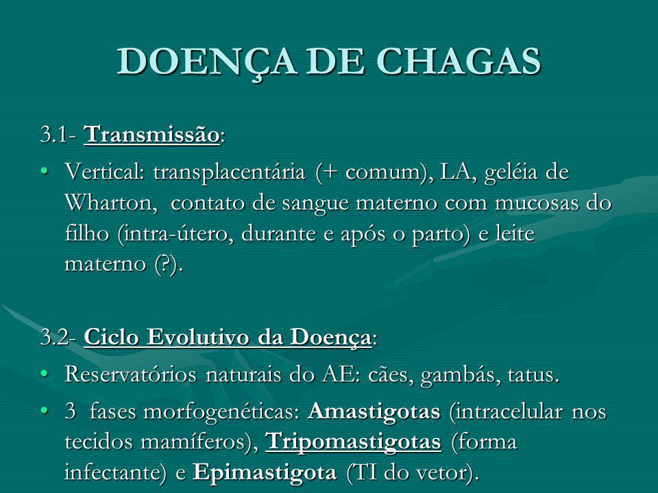 DOENÇA DE CHAGAS 3.1- Transmissão: Vertical: transplacentária (+ comum), LA, geléia de Wharton, contato de sangue materno com mucosas do filho (intra-