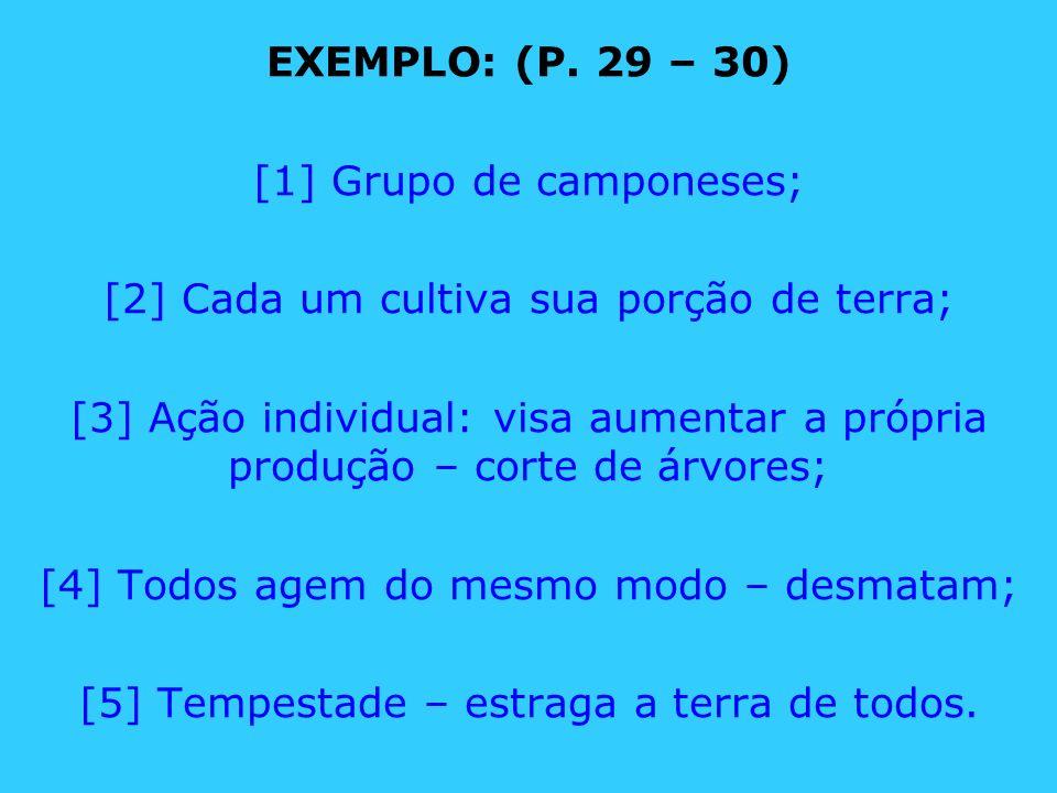 EXEMPLO: (P. 29 – 30) [1] Grupo de camponeses; [2] Cada um cultiva sua porção de terra; [3] Ação individual: visa aumentar a própria produção – corte